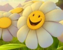 21 Frases sobre la felicidad