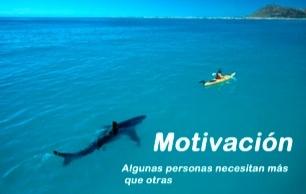 Cómo funciona la motivación